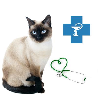 Ветеринарные препараты для кошек