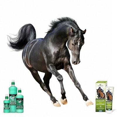Гели, кремы для лошадей