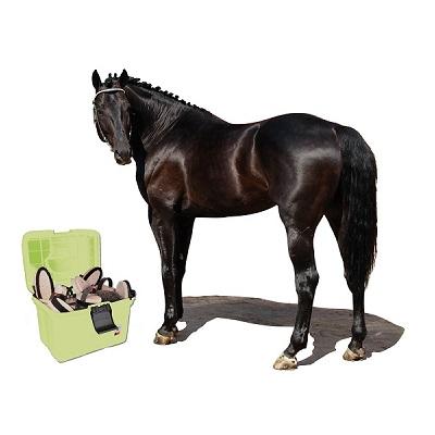 Груминг лошадей